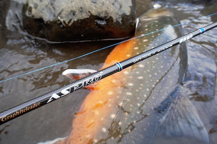 удилища для рыбалки на горных реках